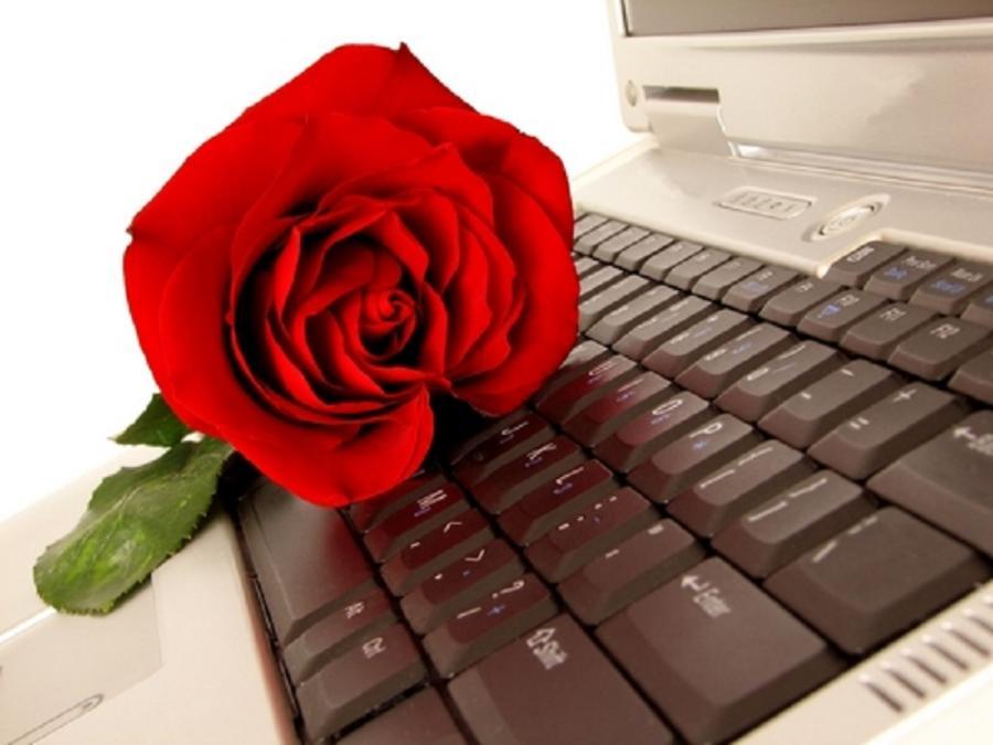 картинки с розами на клавиатуре